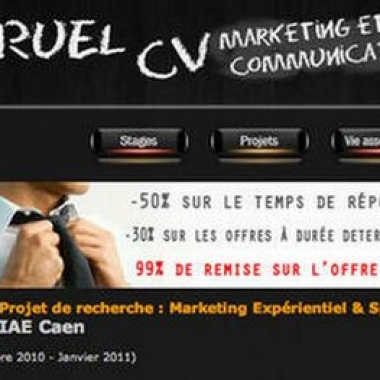 CV marketing original