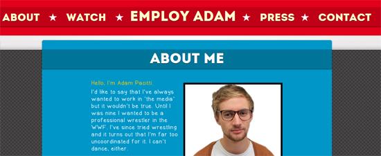 louer panneau publicitaire  faire un cv vid u00e9o et cr u00e9er un site dedi u00e9   adam pacitti veut un job