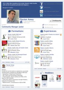 cv-facebook-flavien-amey