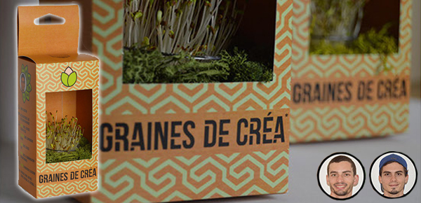 graines de cr u00e9as   le cv de stagiaires pr u00eats  u00e0 planter