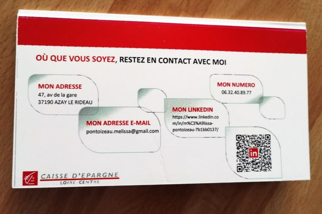 le cv original  u00e0 destination des banques version cv ch u00e9quier